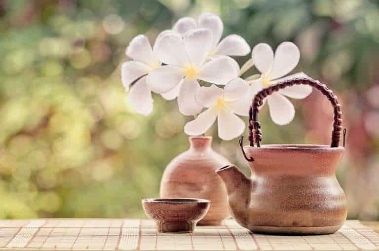 Jogo antigo de chá e flores ao fundo.