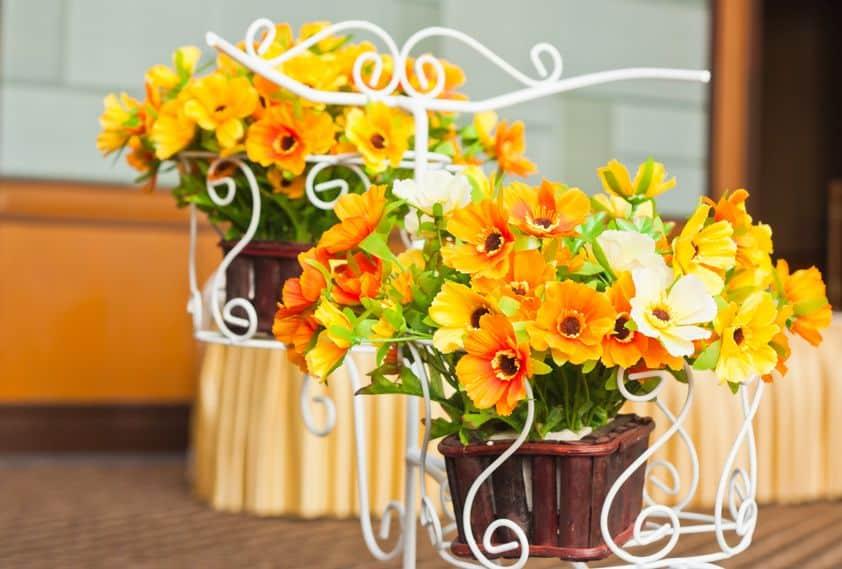 Imagem de vasos com flores.